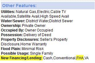 New Financing